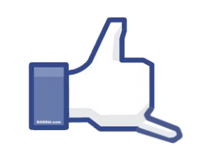 shakafacebook 300x230 Our design Shaka the new LIKE went VIRAL!